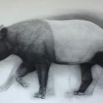 Observer Observed 2011 charcoal on paper 66 x 105 cm (image size) (framed)