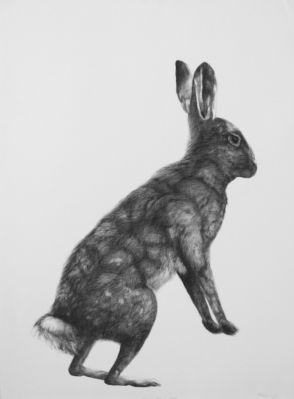 Adriane Strampp Drawing, Encounter I, 2010, Charcoal On Paper, 76 X 56 Cm