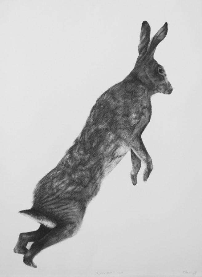 Adriane Strampp Drawing, Apprehension I, 2010, Charcoal On Paper, 76 X 56 Cm