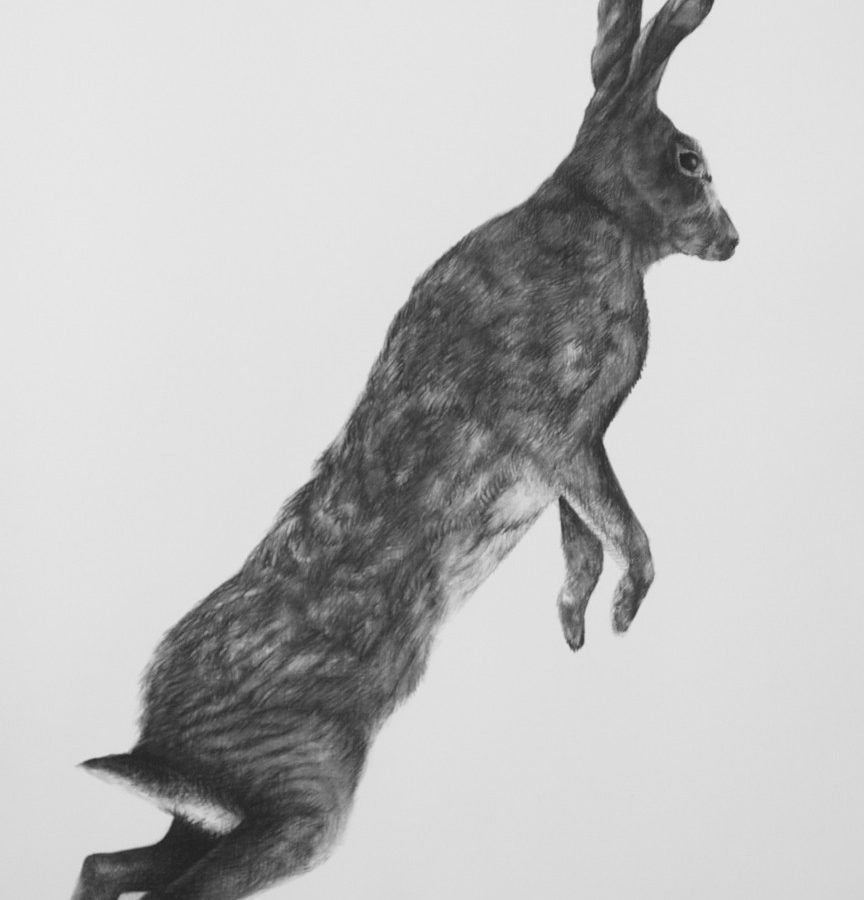Adriane Strampp Drawing, Apprehension I, 2010, Charcoal On Paper, 76 X 56 Cm